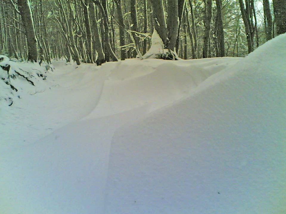 Velikonočni sneg (Nokia 6680)