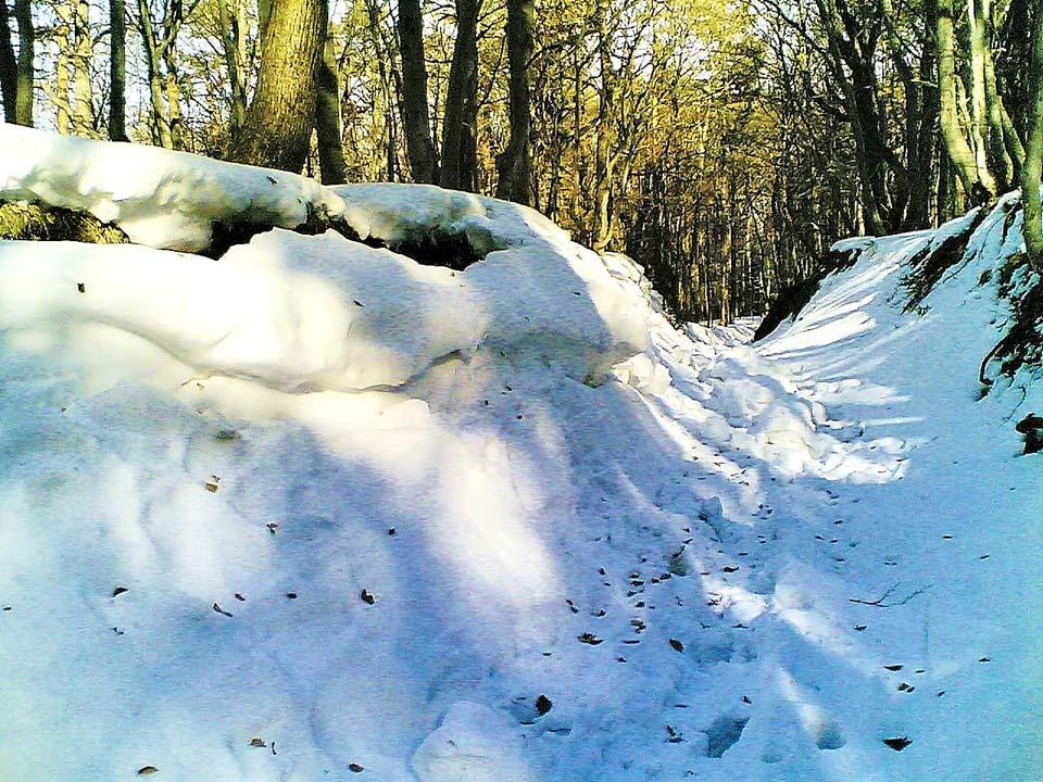 Snežno razdejanje v pripravi (Nokia 6680)